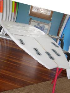 Mt Woodgee Surfboards TRADEMARK
