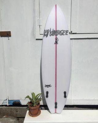 Mt woodgee surfboards Black birds