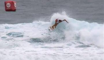 Roxy Pro Gold Coast Paige Hareb Round3へ